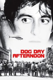 Um Dia de Cão
