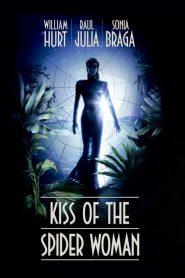 O Beijo da Mulher Aranha