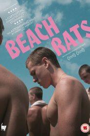 Beach Rats (Ratos de Praia)