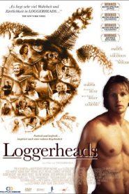 Loggerheads (Tartarugas Também Choram)