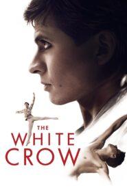 The White Crow (O Corvo Branco)