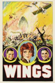 Wings (Asas)